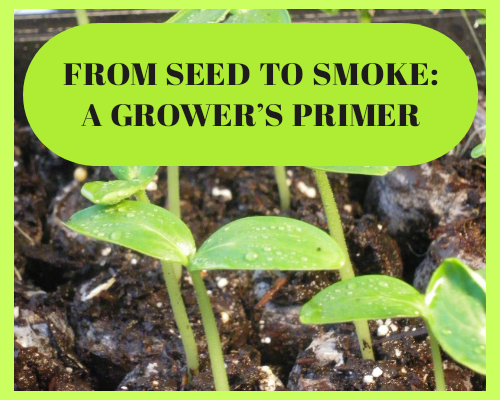 From Seed to Smoke : A Grower's Primer